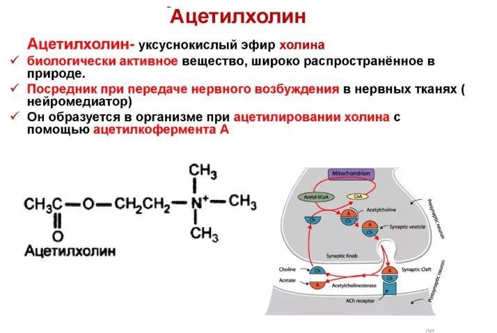 Ацетилхолины